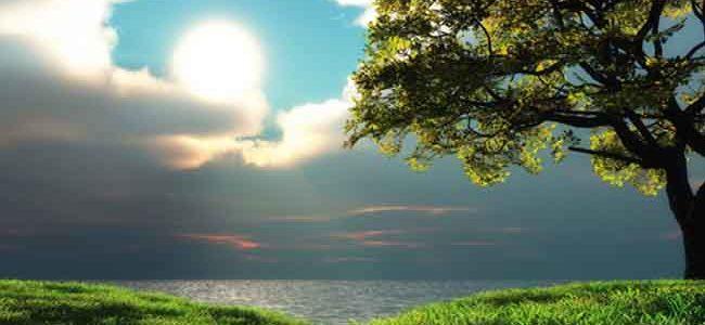 A Sabedoria de Deus [Atributos de Deus]